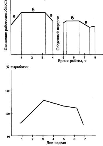 Роль двигательной активности в жизнедеятельности человека