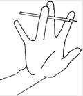 Основные направления работы по развитию мелкой моторики рук у детей с общим недоразвитием речи
